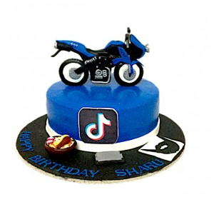 Birthday Cake-Bike Biryani & Ticktok