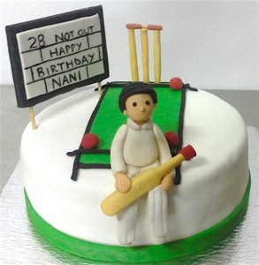 28th Birthday Cricket theme Cake