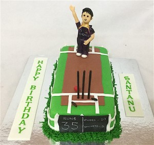 35th Birthday Cake Cricket theme