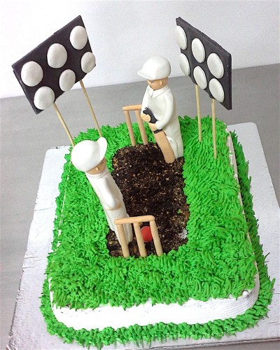 Cricket Pitch Birthday Cake.jpg